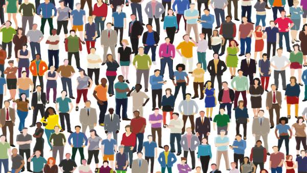 Sondage et consultation plan_action en developpement social
