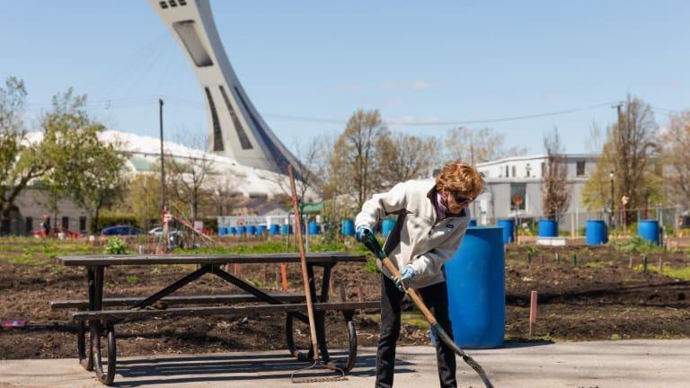 Ouverture des jardins communautaires