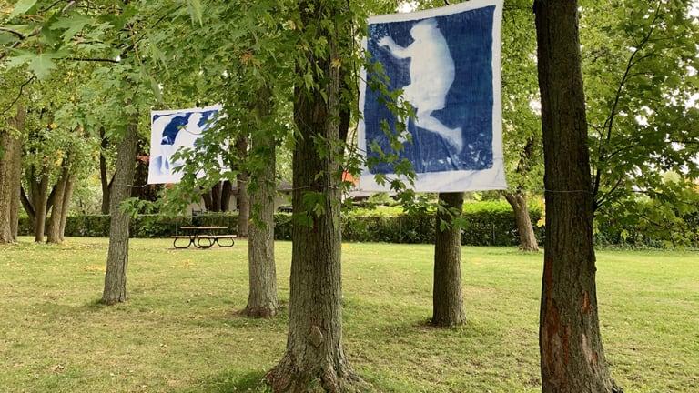 photo d'une oeuvre tirée de l'exposition extérieure de Tanha Gomes intitulée Bleu rêve