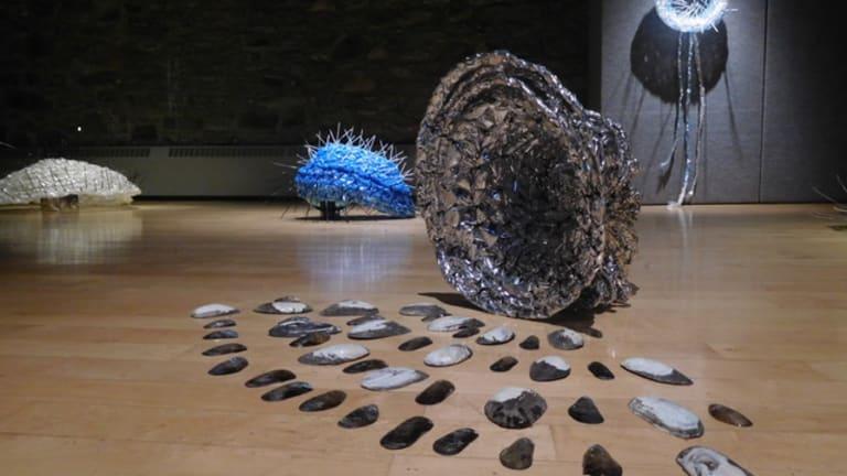 Exposition Au jardin de protozoa à L'Entrepôt de Lachine