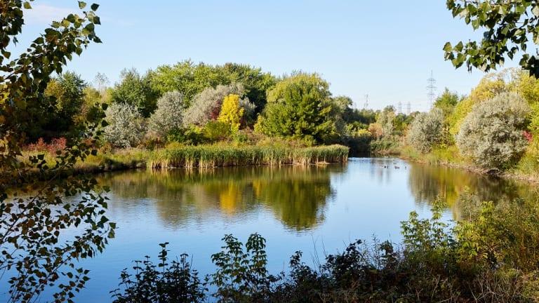 Anjou-sur-le-lac