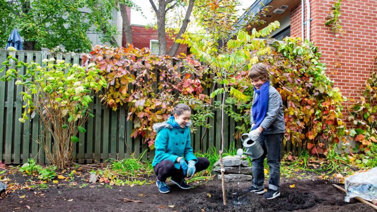 Deux enfants qui plantent un arbre