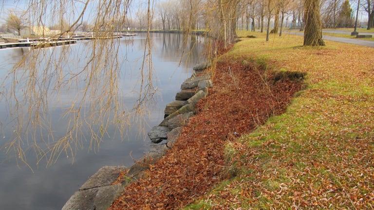 Berge à restaurer - Parc René-Lévesques