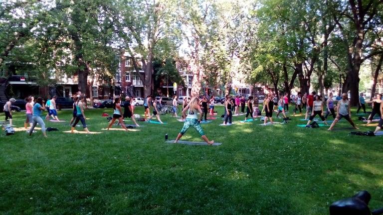 Yoga Parc Baldwin 2016