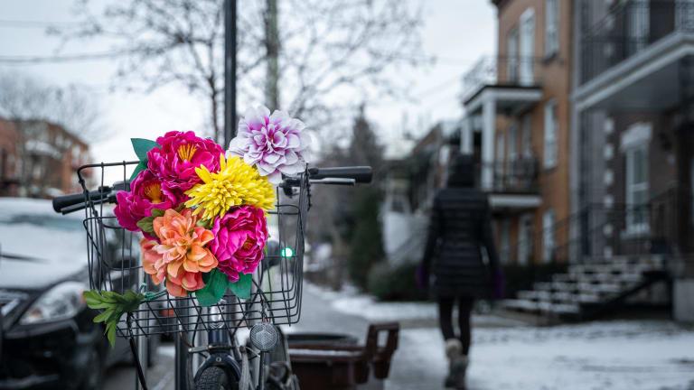 Rosemont–La Petite-Patrie vue d'une rue et vélo avec fleurs