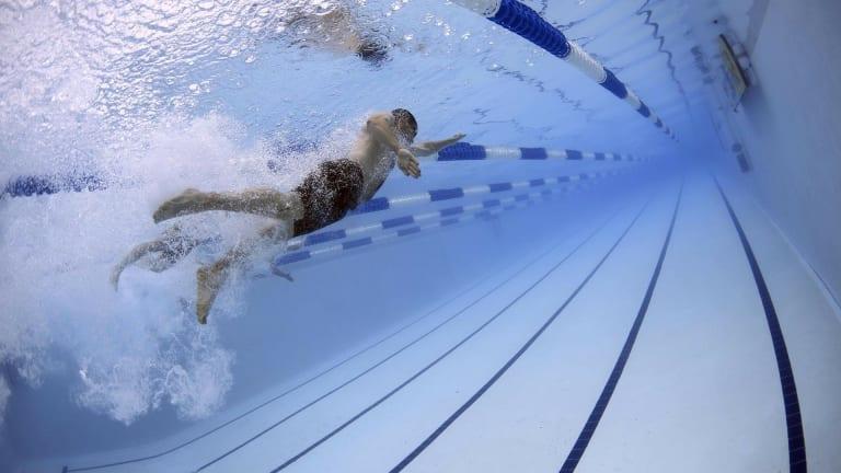 Deux nageurs font des longueurs dans une piscine.