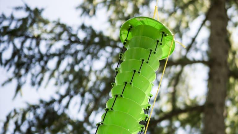 Piège novateur en forme d'entonnoir pour lutter contre l'agrile du frêne.