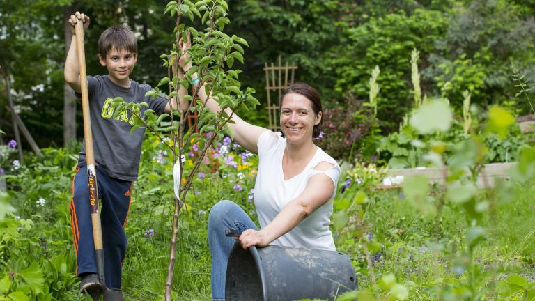 Un enfant et sa mère plante un arbre