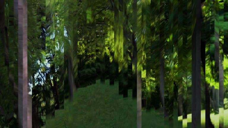 Résidence de création en art numérique de l'artiste Nathalie Bujold.
