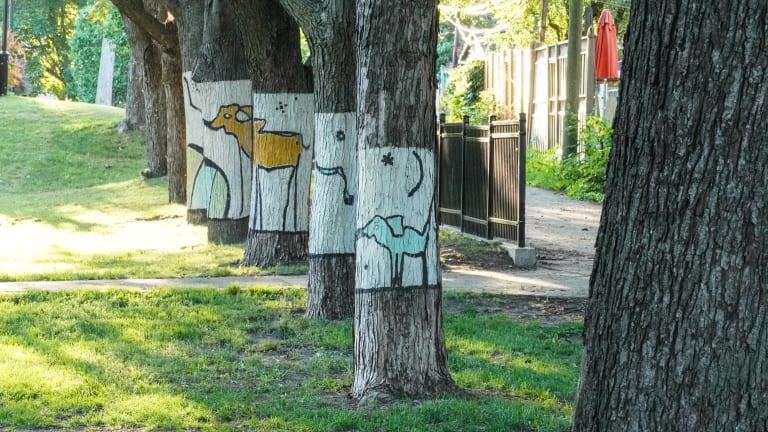 Les luniphantesques de Dominic Besner au parc Morgan