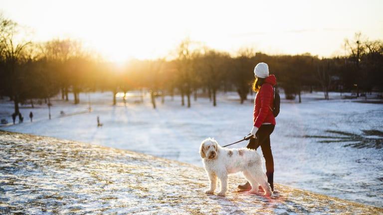 Jeune femme qui marche en ville avec son chien