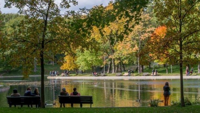 PMR_Parc La Fontaine_Toma Iczkovits
