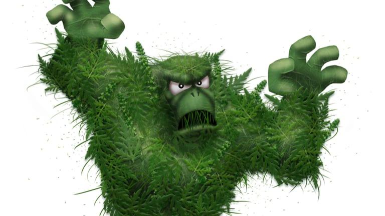 Le monstre nommé Herbapoux, sorte de yéti végétal à la fois menaçant et facile à combattre, créé pour la campagne