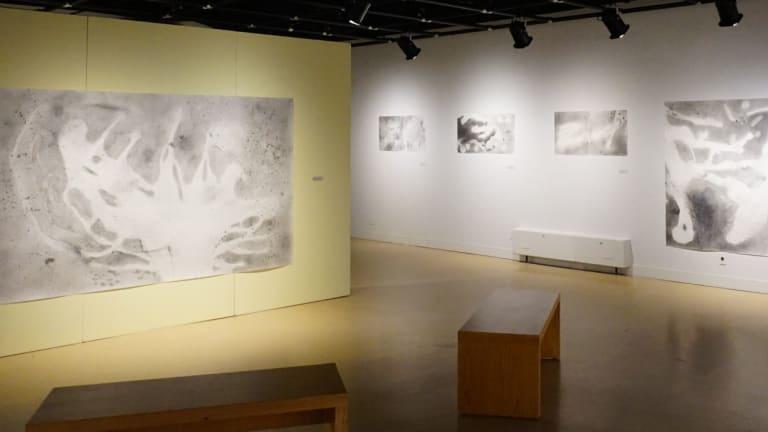 Cinq œuvres en noir et blanc sont exposées dans une salle d'exposition