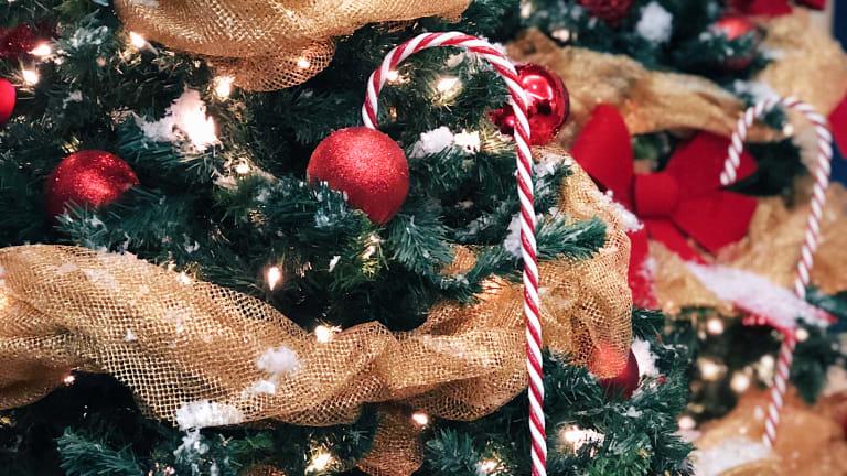 LSL_Collecte arbres de Noël