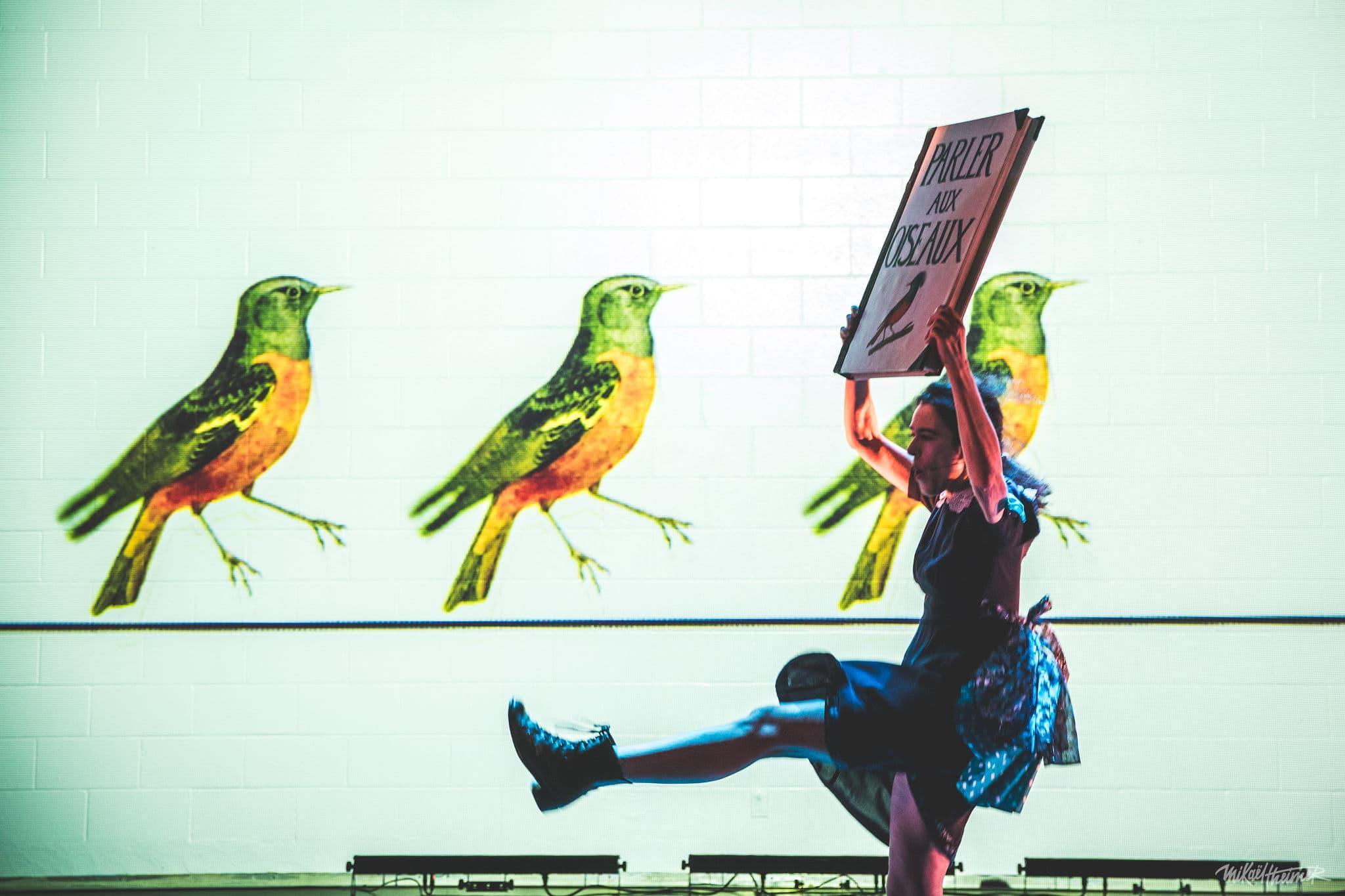 Image de la pièce Comment j'ai appris à parler aux oiseaux.