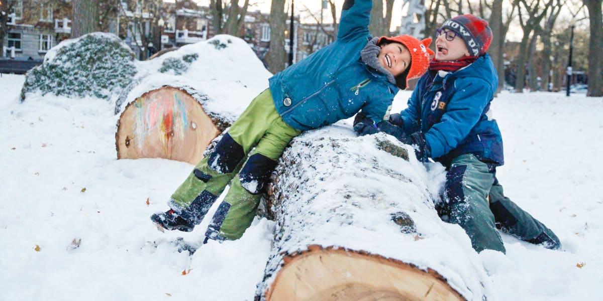 Des enfants jouent au parc Molson près de l'arbre déraciné.