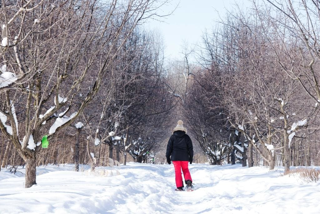Une femme marche en raquette dans un sentier boisé à RDP-PAT.