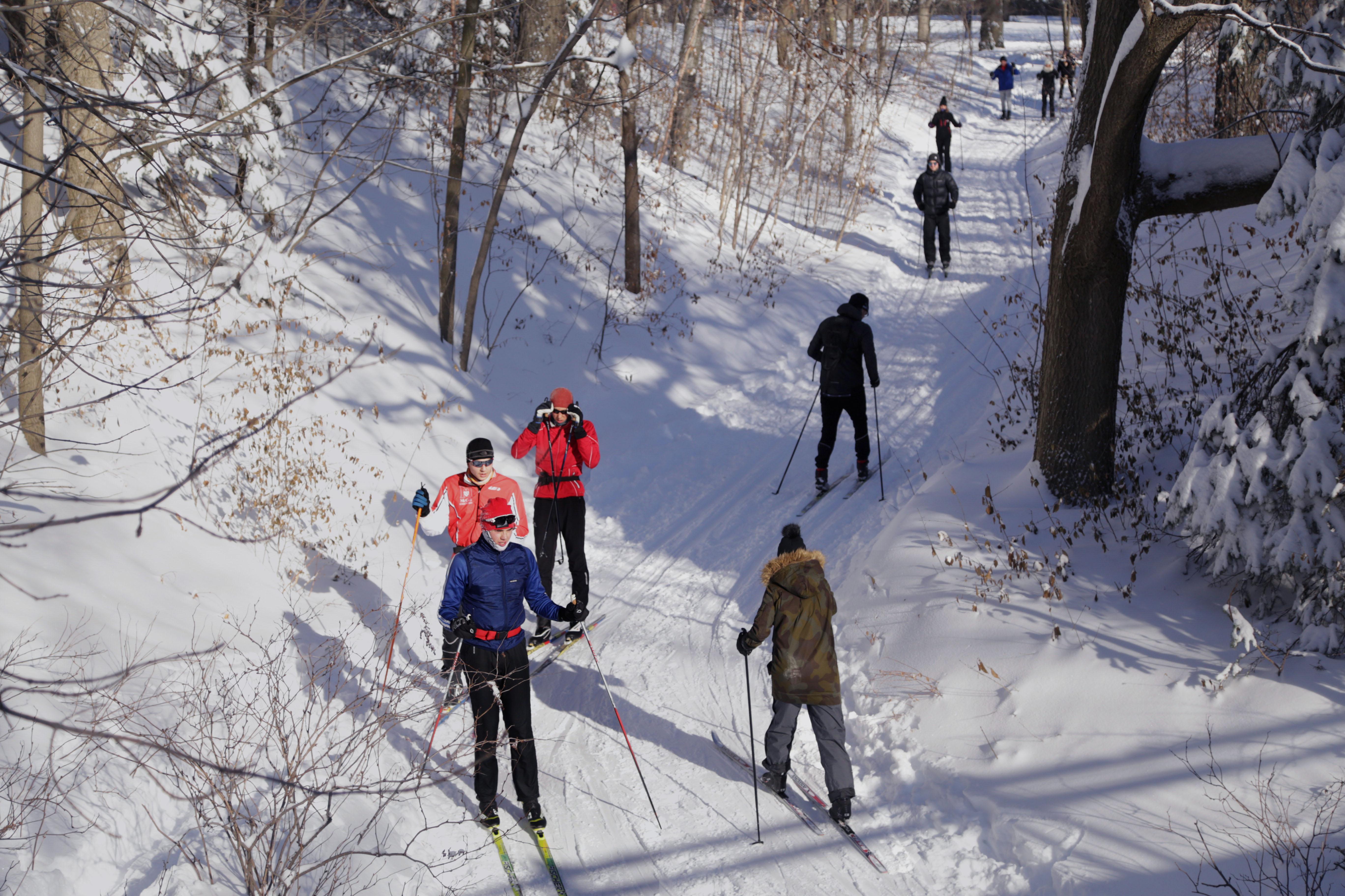 Ski de fond dans le parc du mont Royal Ville-Marie Joudy Hilal