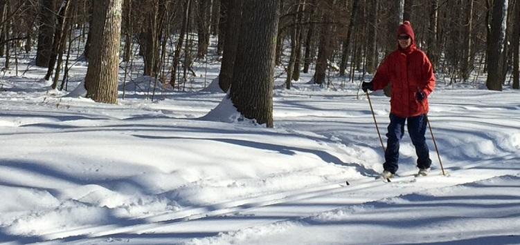 Un personne faisant du ski de fond