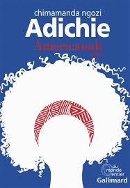 Americanah, de Chimamanda Ngozi Adichie, éditions Gallimard, 2019