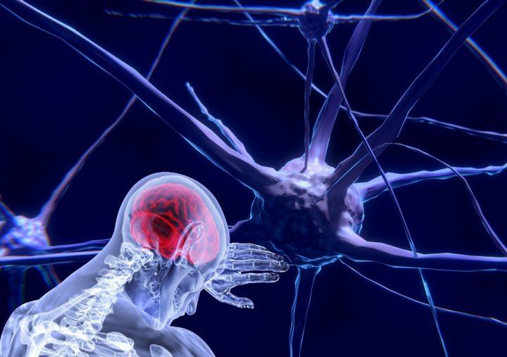 Qu'est-ce qui tue les neurones?