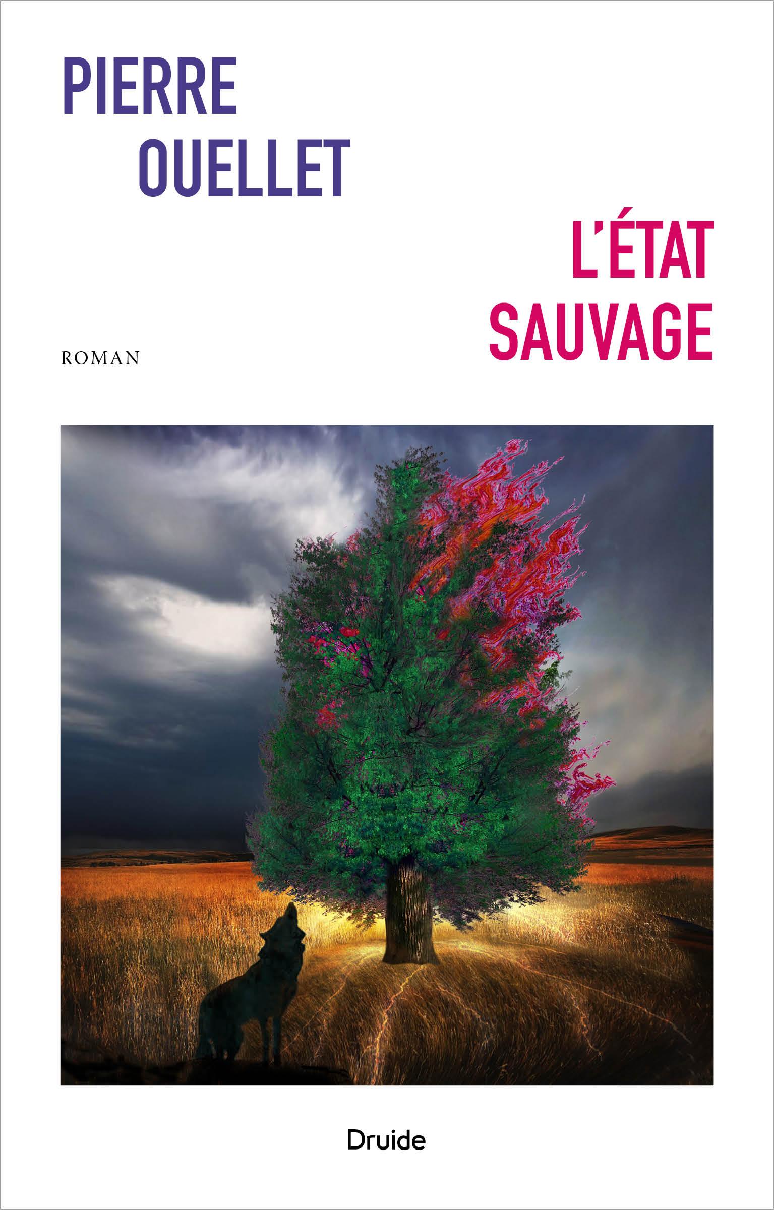 L'état sauvage, de Pierre Ouellet, éditions Druide