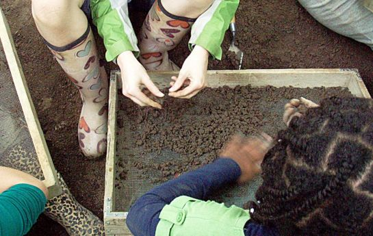 Archaeological excavation done by children
