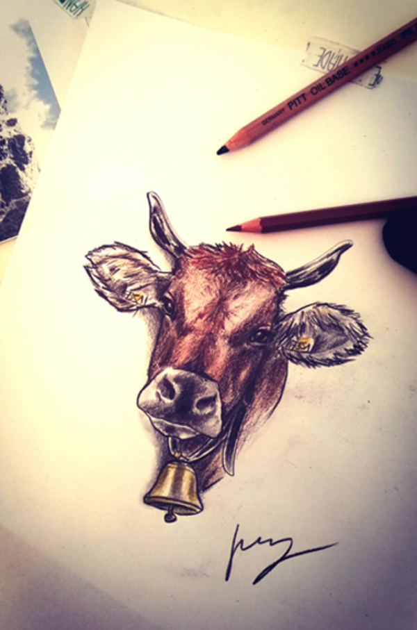 Kuh Zeichnung