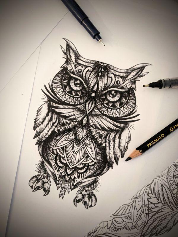Eule Zeichnung