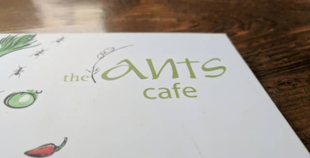 The Ants Cafe Whitefield