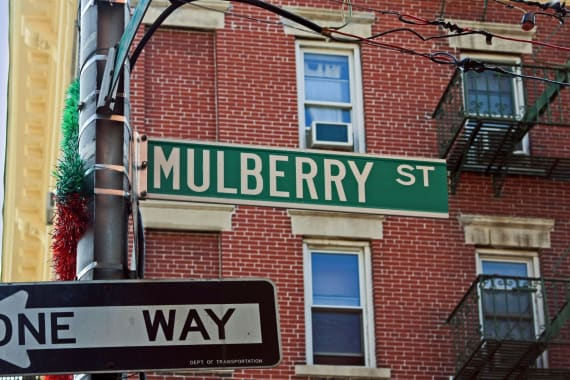 photo of 133 Mulberry Street  ·  5A