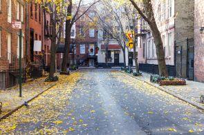 Greenwich Village Celebrity News