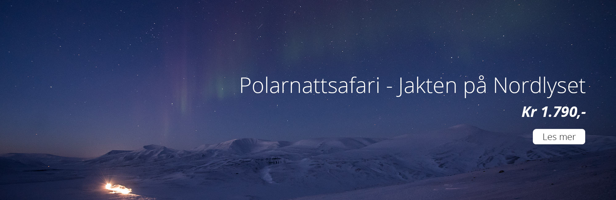 Polarnattsafari - jakten på nordlyset