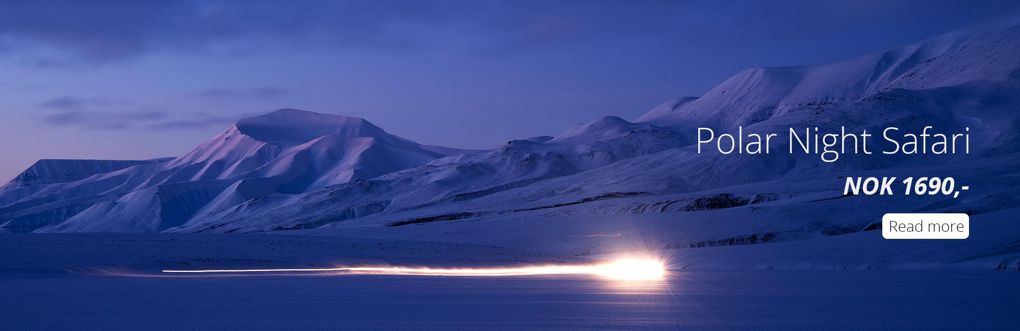Polar Night Safari