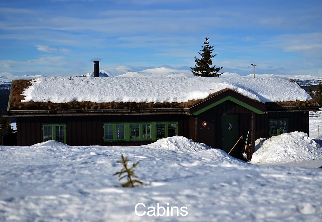 More about the cabins