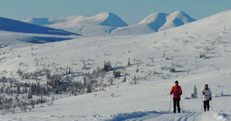 Langrenn og fjellskikjøring