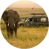 WHAT IS GAME DRIVE?