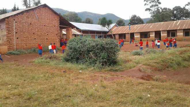 Iyunguya Primary School Compound