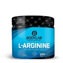 L-Arginin Mono HCL (120 Kapseln)