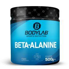 Beta-Alanine (500g)
