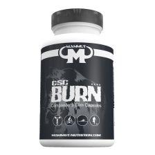 Fat Burner CSC (90 Caps)