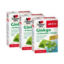 3 x Ginkgo + Vitamin B + Cholin (3x40 Kapseln)