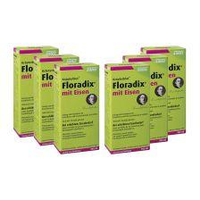 6 x Floradix mit Eisen Tonikum grün (6x500ml)
