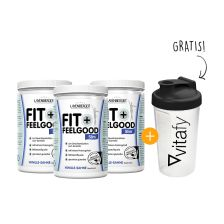 3 x Fit+Feelgood Mahlzeitersatz SLIM (3x430g) + Vitafy Shaker (600ml) gratis!