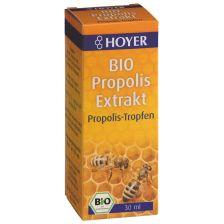 Propolis Extrakt bio (30ml)