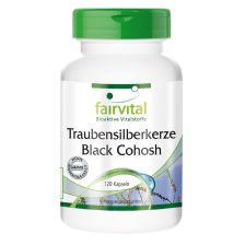 Traubensilberkerze Black Cohosh (120 Kapseln)