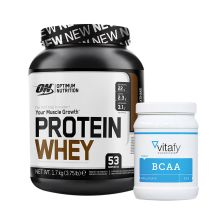 Optimum Nutrition Protein Whey (1700g) + Vitafy Essentials BCAA (500g)
