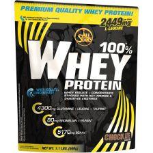 100% Whey Protein (500g)