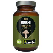 300 mg Bio Reishi Pilz Extrakt (90 Kapseln)